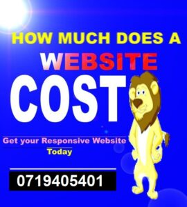 Website Design Cost in Kenya